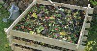 compost-gardening